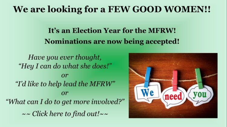 Why not run for an MFRW Office?